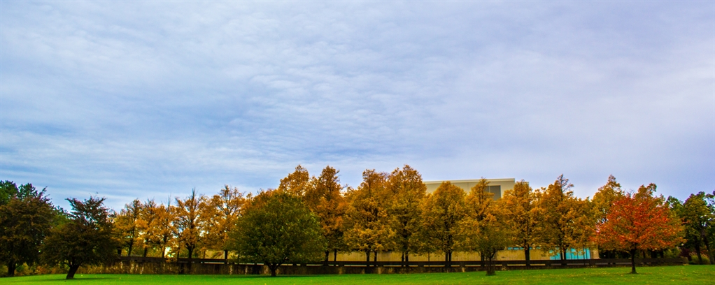 Fall Colored Trees On SUNY Oswego Campus Scholarship Page